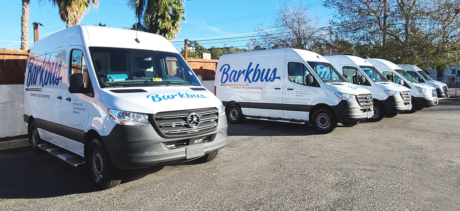 Barkbus vehicle branding with brand name decals made of opaque vinyl