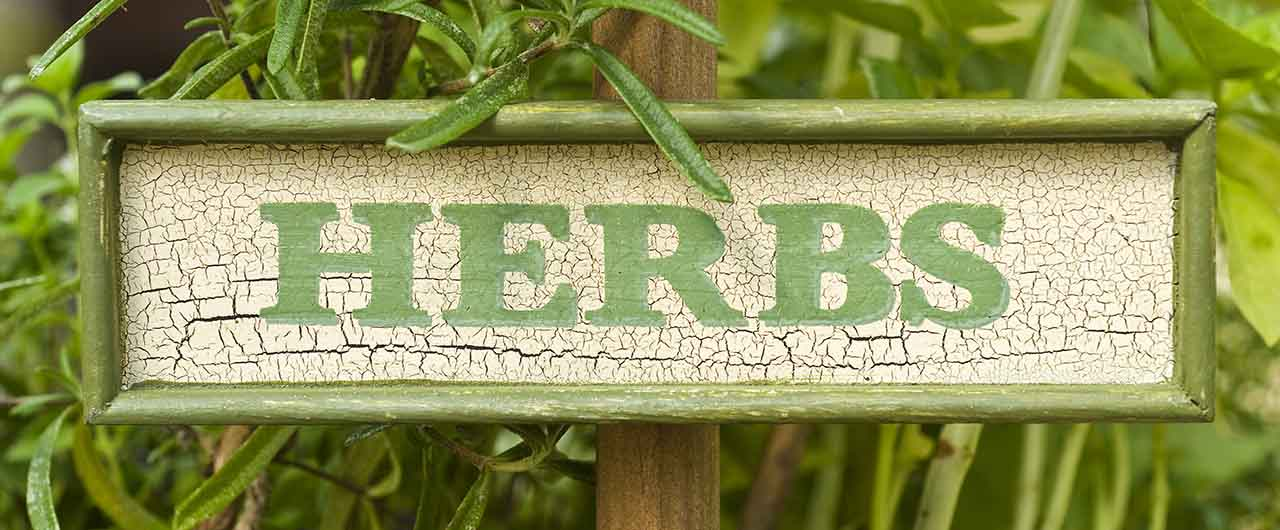 HERBS garden sign of wood with printed letters