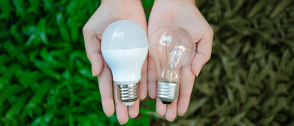 LED and incandescent light bulb