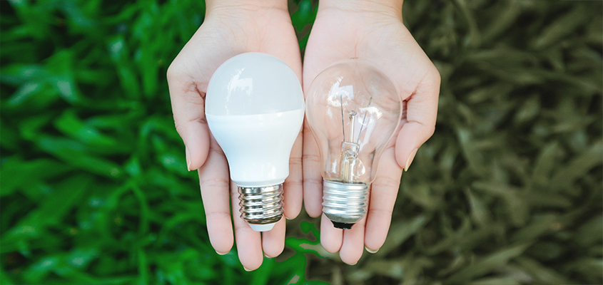 LED lights as biodegradable items