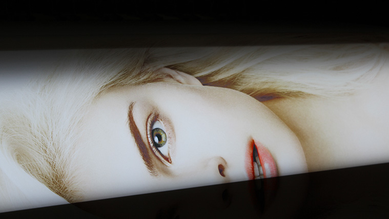 Image printed on a Translucent Opaque Vinyl
