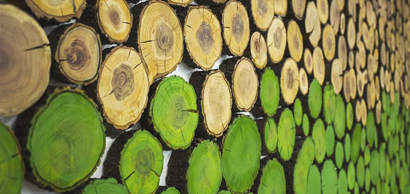 Wooden sustainable decor element used in interior space