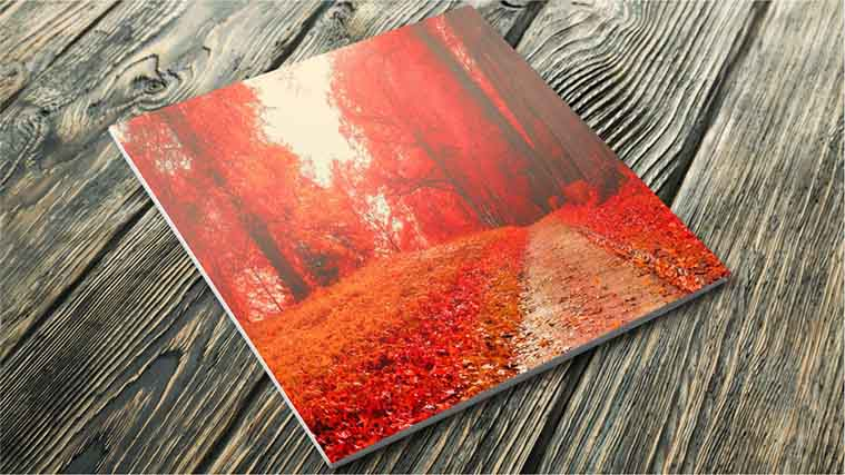 Beautiful Fall scenery photo Printed on a Foamboard