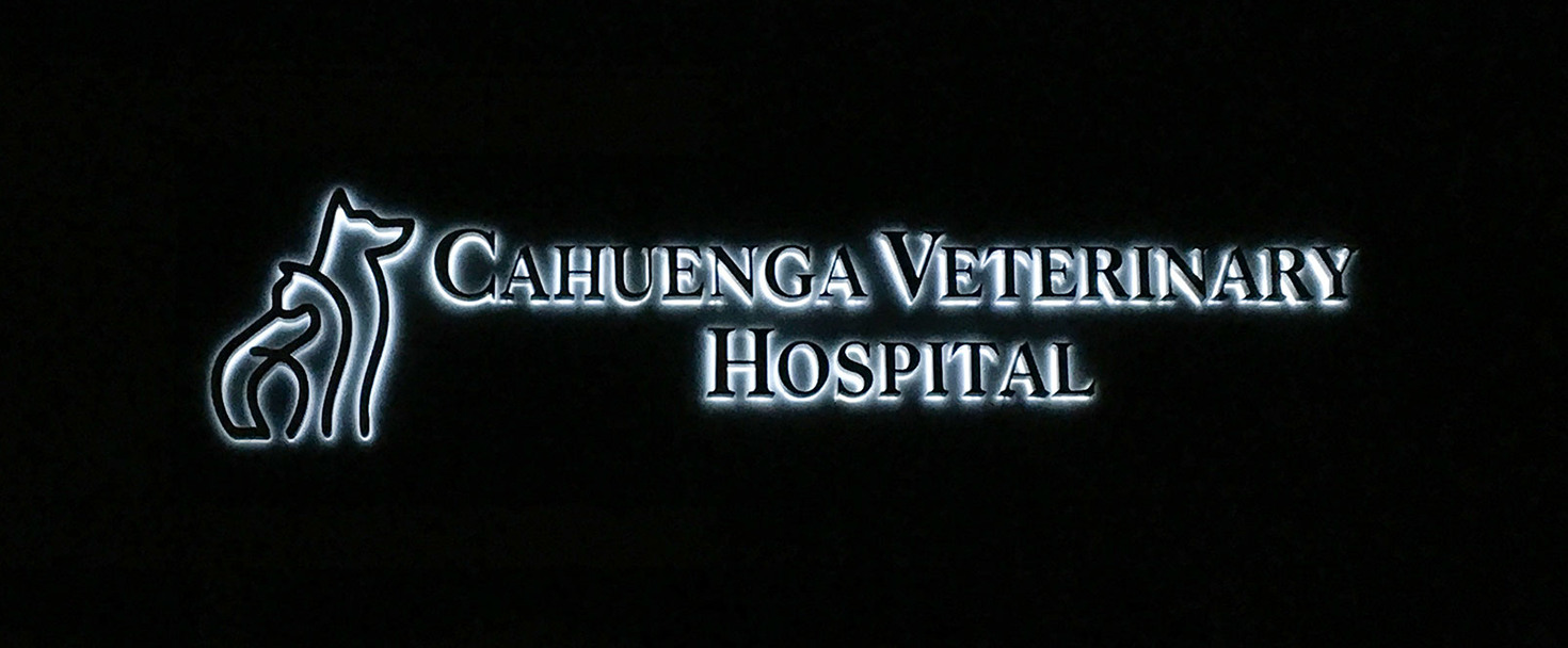 Cahuenga Veterinary Hospital illuminated channel letters made of aluminum and acrylic for business night-time visibility