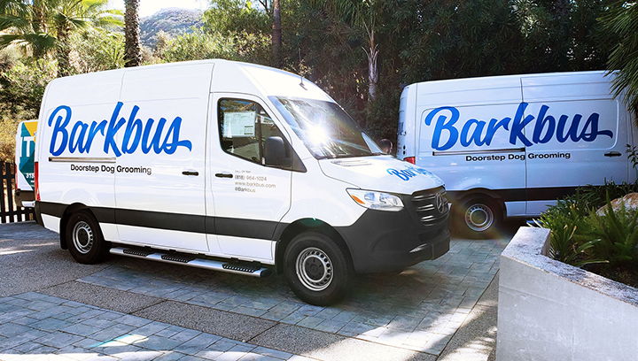 Barkbus vinyl decals in blue and black made of opaque vinyl applied to the car