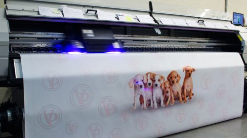puppies printed on banner