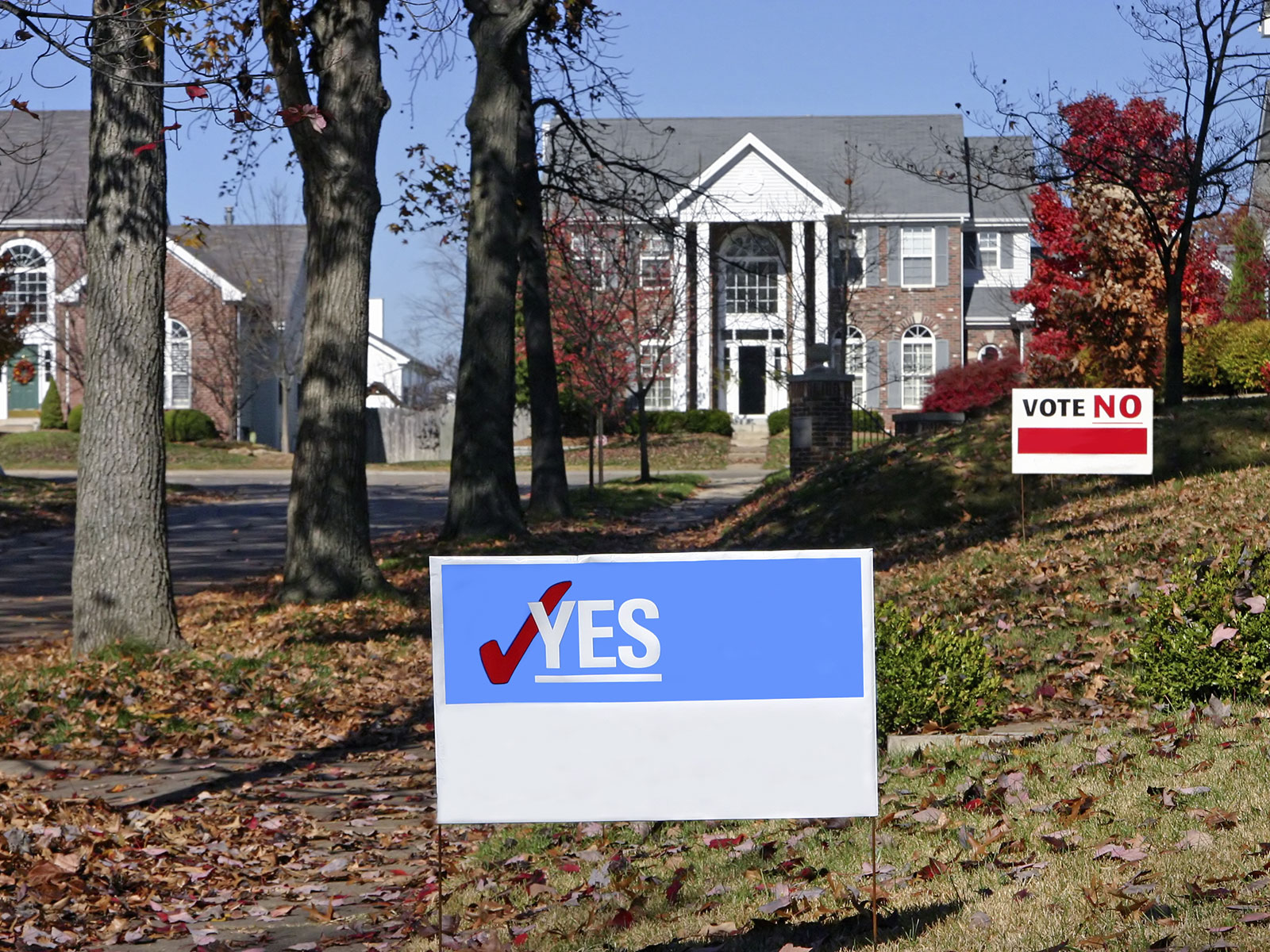 Political yard sign vote