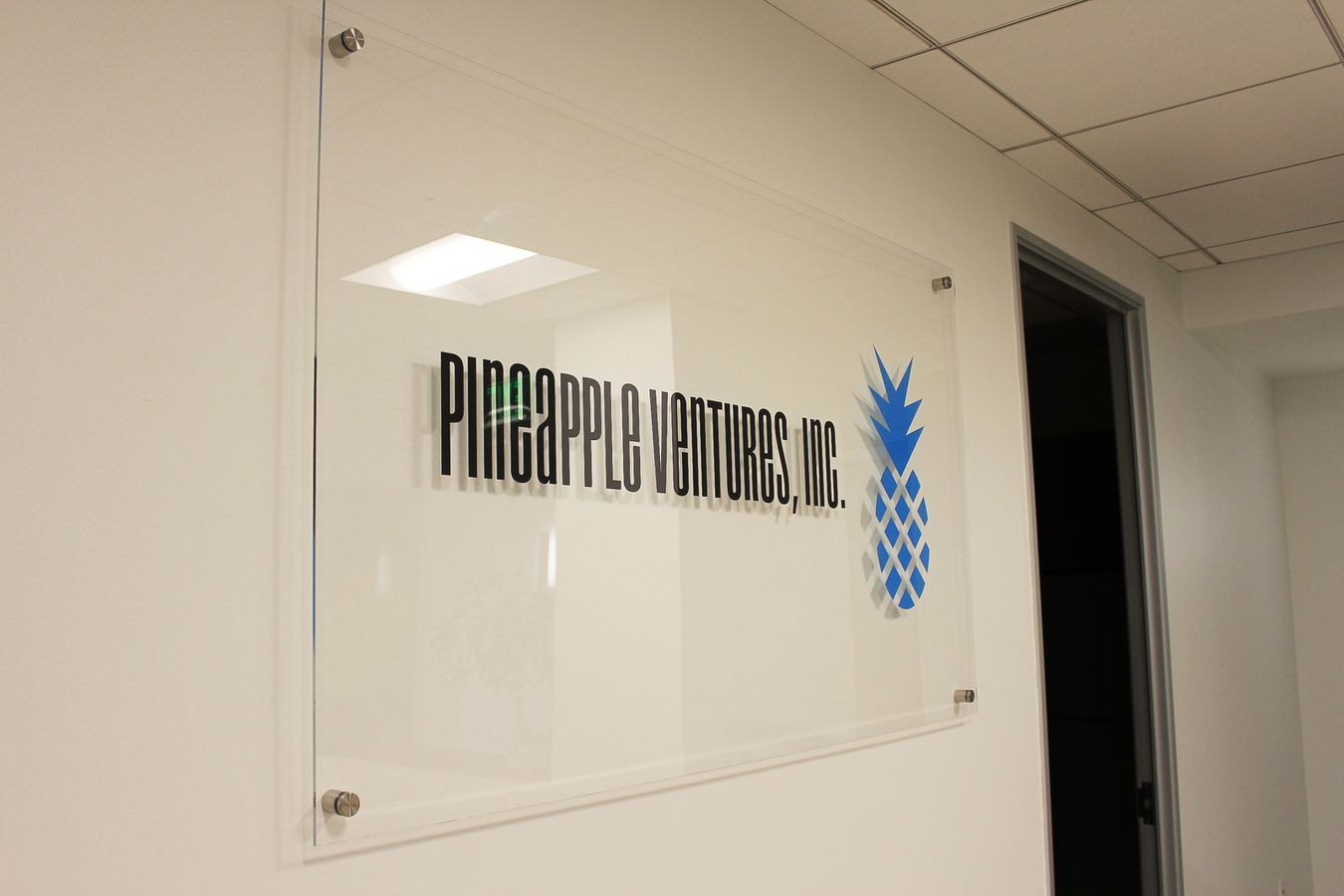 Pinapple Ventures Inc sign