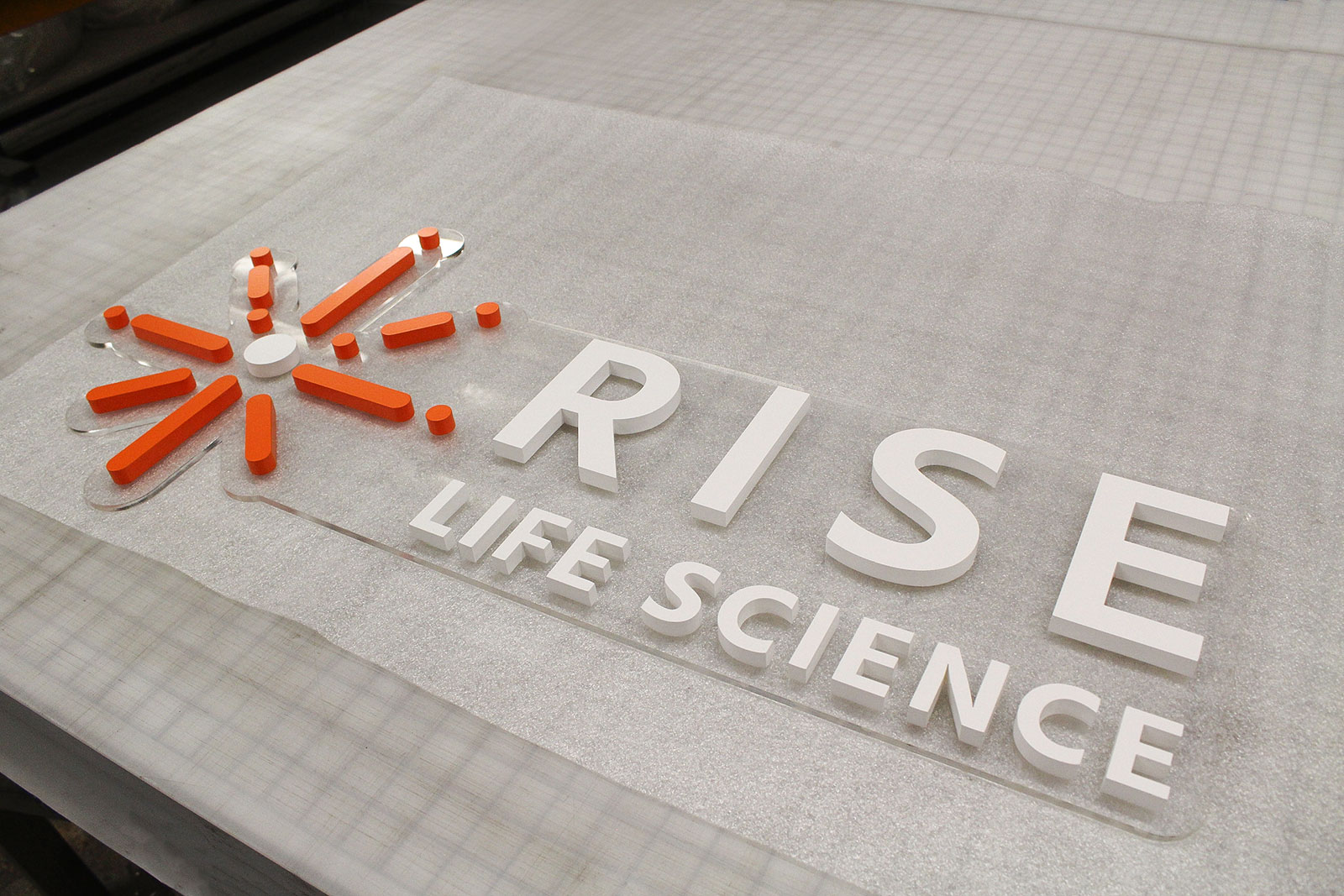 Rise Life Science acrylic logo sign and letters with a transparent background for company lobby branding