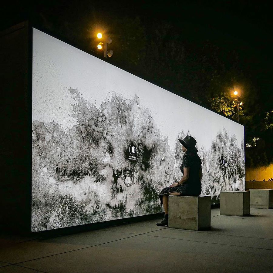 illuminated wall art installation