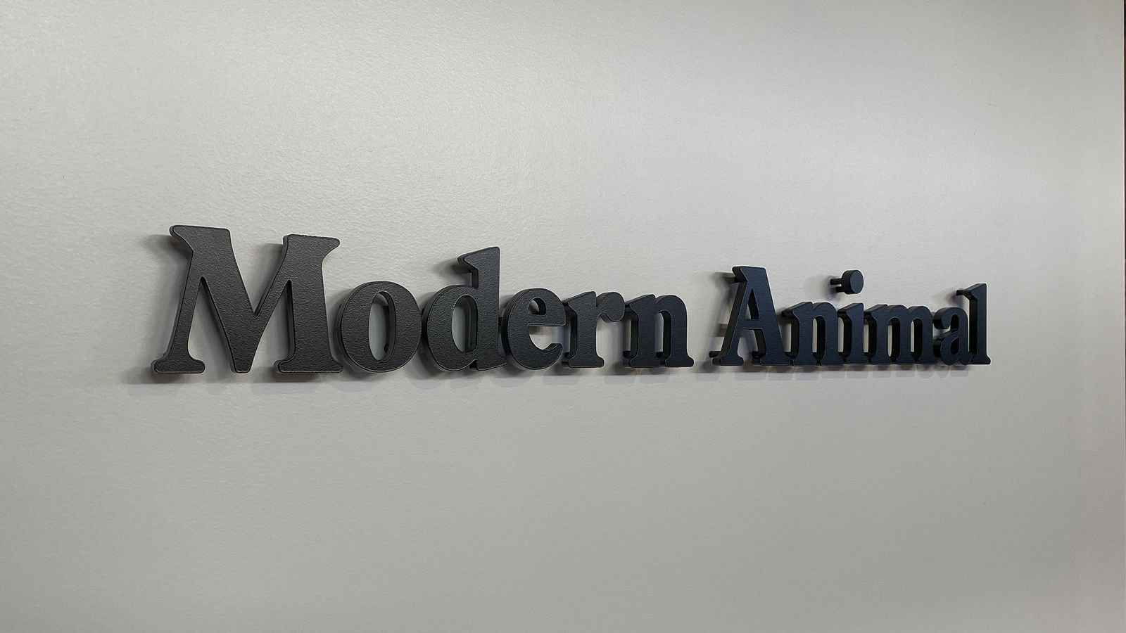 Modern Animal 3d acrylic letters sign painted in black color for interior branding