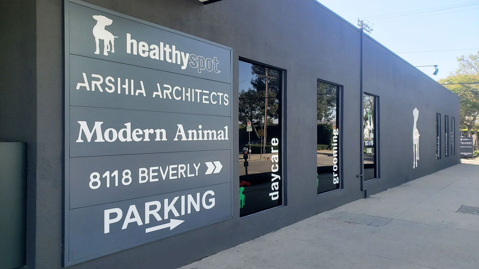 Modern Animal storefront branding with lettering and acrylic sign