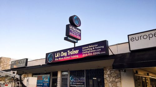 LA's Dog Trainer 2 large light boxes made of aluminum and acrylic for animal training center storefront brand visibility