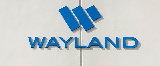 Wayland acrylic laser cut letters idea