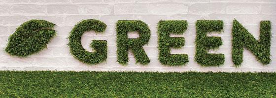 Green restaurant Eco-friendly interior design idea