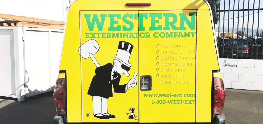 Image showing a business branding idea for 'WESTERN' exterminator company