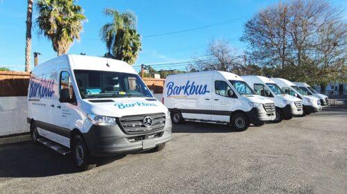 Barkbus vehicle wrap