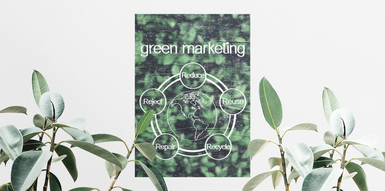 Green marketing graph displayed on the wall