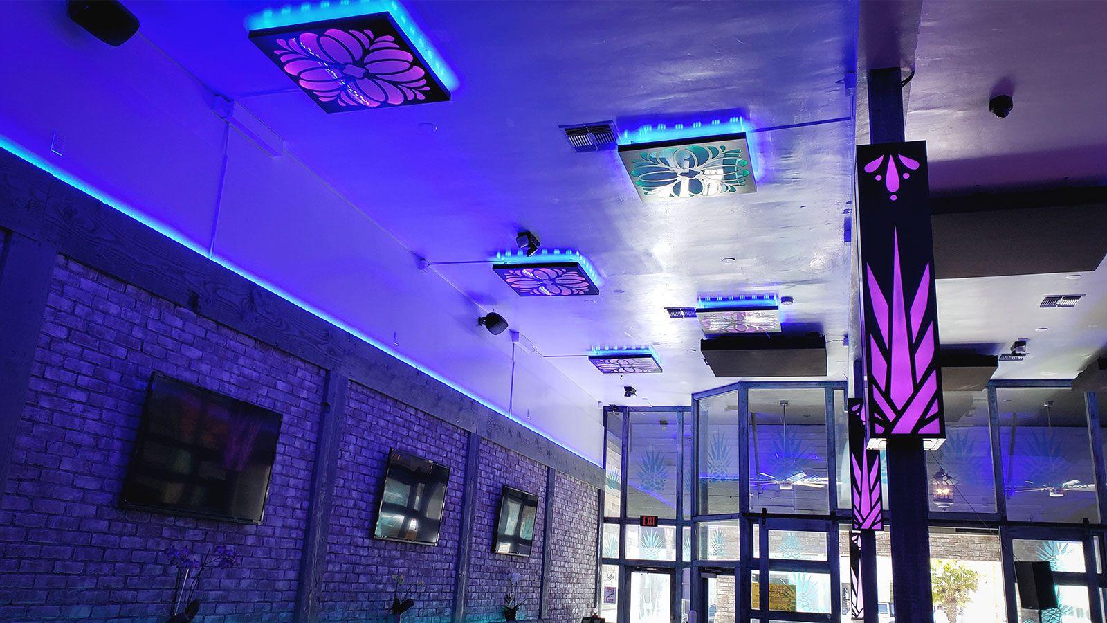 Agave Azul lightbox signs