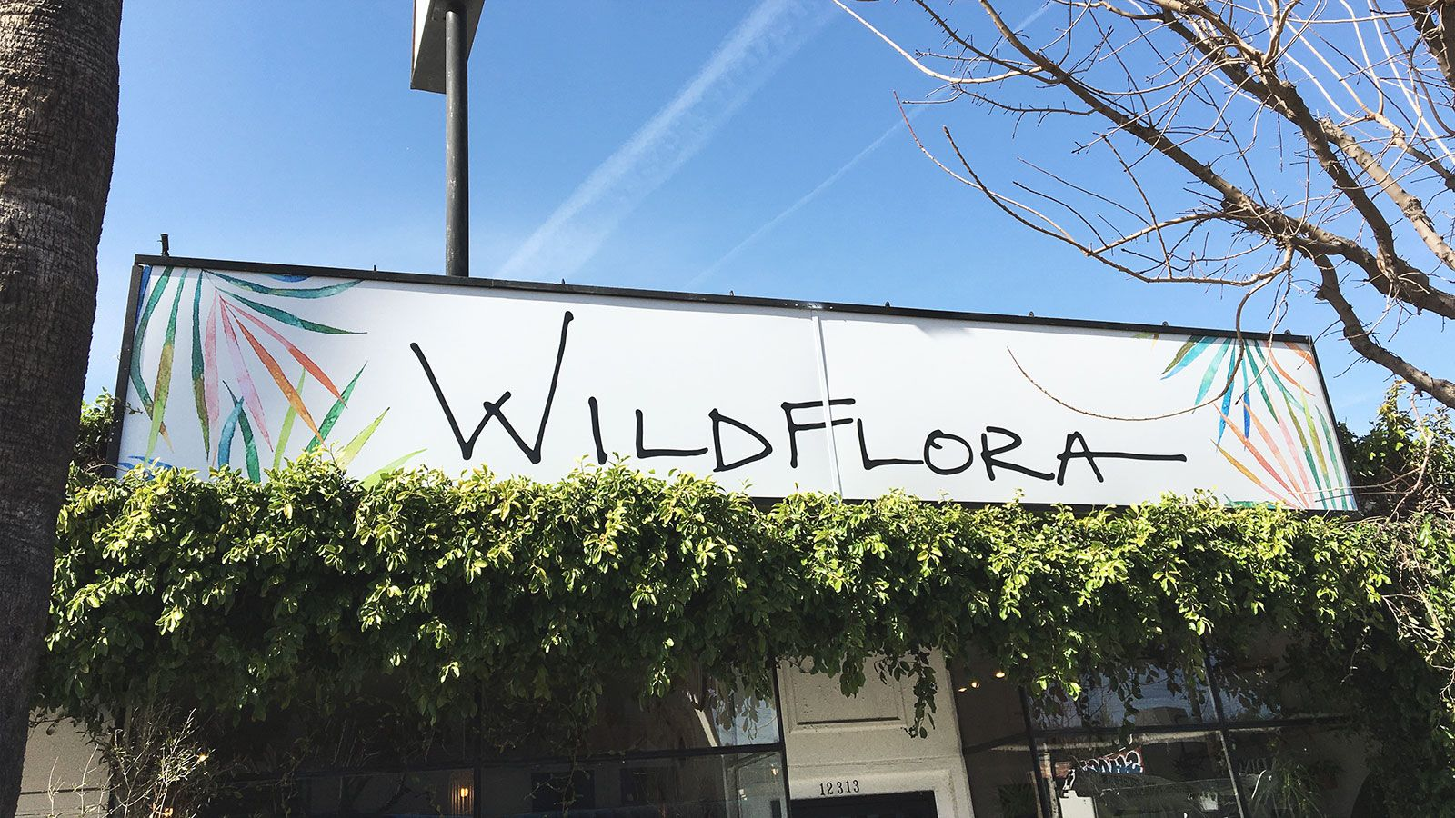 Wildflora design lighted signs