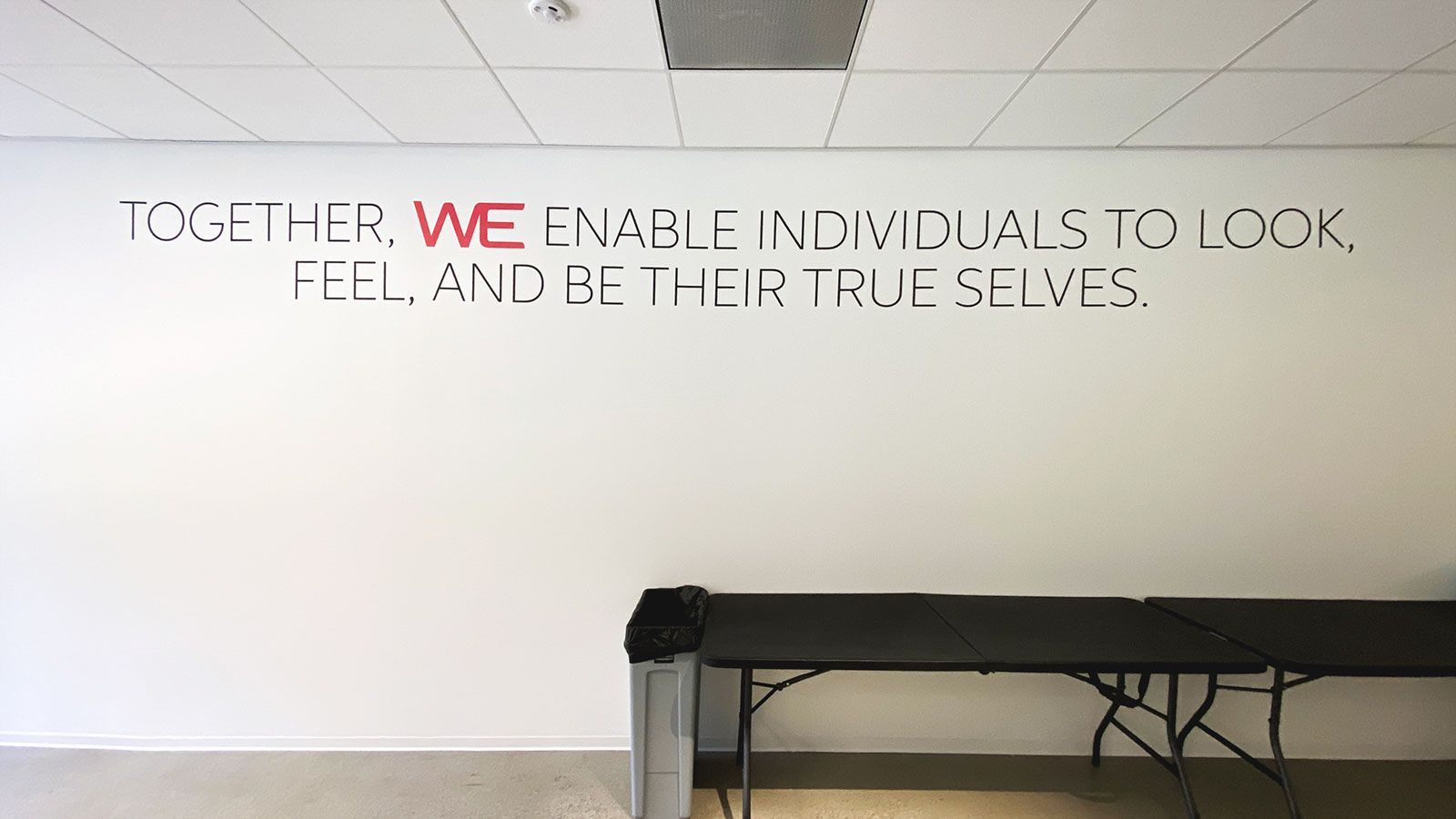 Wella Professionals office vinyl lettering
