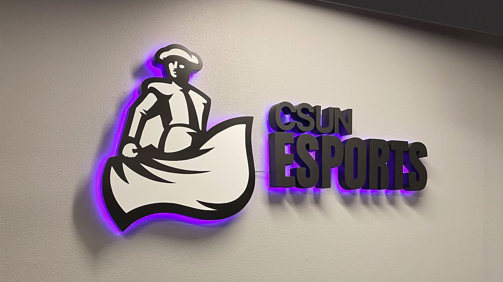 csun esports reverse channel letters