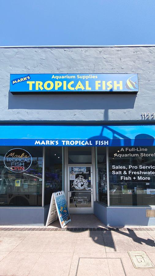 Tropical fish lightbox sign
