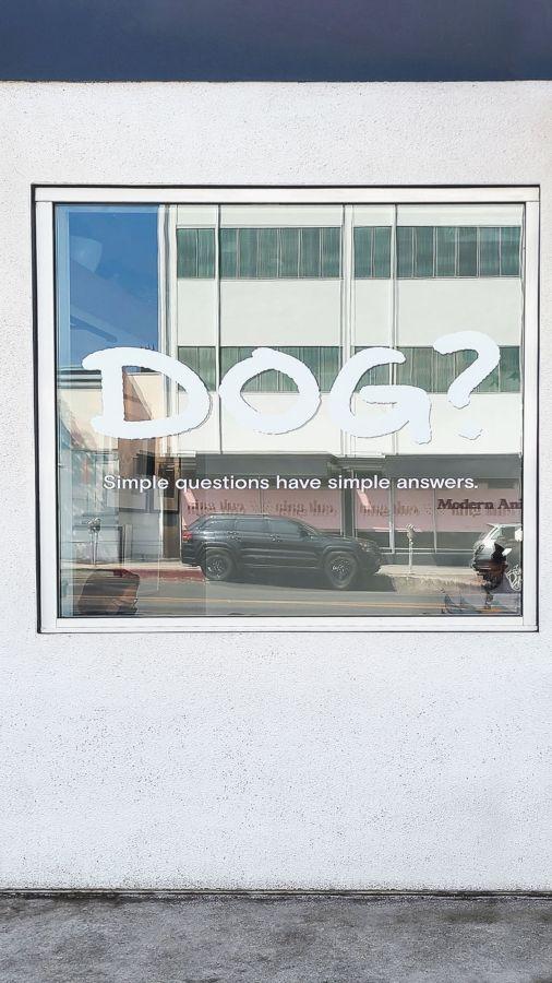 modern animal window vinyl lettering